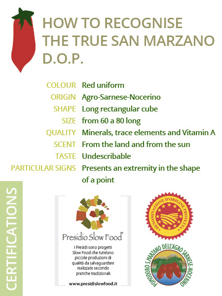 sanmarzano